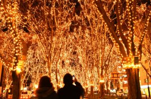 Viewing Christmas lights like these is another popular pastime in Japan.