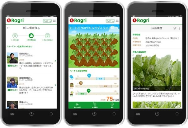 After logging into the Ragri remote farming platform, users can choose the vegetables they want, the farmers they want to grow them and also monitor and receive updates on their progress. They can also participate in the cultivation by requesting watering, fertilizer application or weeding.