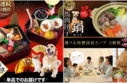 Osechi Ryori - As 2018, the year of the dog, draws near, we decided to share some of the more unique ways humans around the world are pampering their pooches.