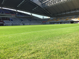 Noevir Stadium has become Japan's first football pitch to feature a hybrid grass surface.